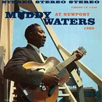 Muddy Waters - At Newport - 180g LP