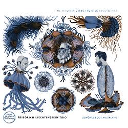 Friedrich Liechtenstein Trio - Schönes Boot Aus Klang - 180g D2D LP