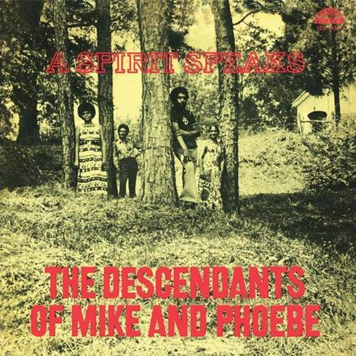 The Descendants Of Mike & Phoebe - A Spirit Speaks - 180g LP