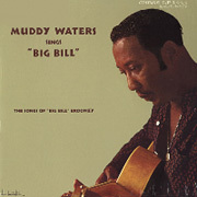Muddy Waters - Sings Big Bill Broonzy  - 180g LP