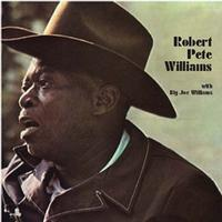 Robert Pete Williams with Big Joe Williams - 180g LP