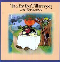 Cat Stevens - Tea For The Tillerman - 45rpm 200g 2LP