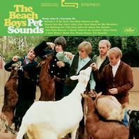 Beach Boys - Pet Sounds - 45rpm 200g 2LP