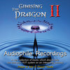 Chasing The Dragon II - Audiophile Recordings by Mike Valentine  ( Test LP ) - 180g LP