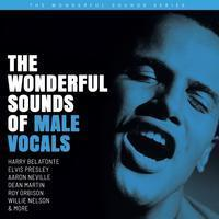 The Wonderful Sounds Of Male Vocals - Various Artists - 200g 2LP